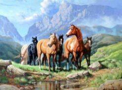 paarden in een veld diamond painting
