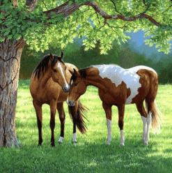 Diamond Painting Paarden onder een boom