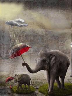 Olifant met rode Paraplu
