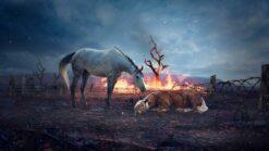 Paarden rusten uit