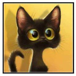 Kitten met hele grote ogen