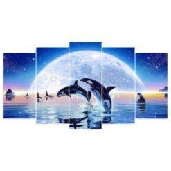 Orca's in het water 5 luik