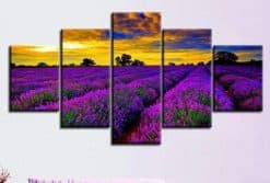 Paarse bloemen in een veld 5 luik