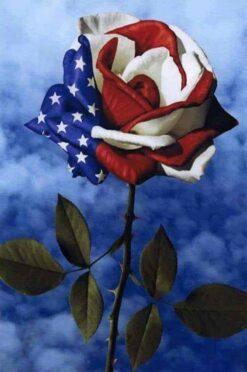 USA roos