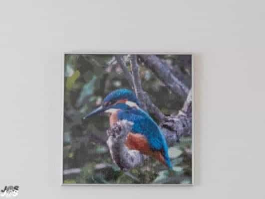 Blauwe vogel diamond painting