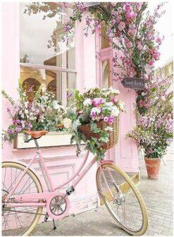 Fiets bij bloemenwinkel - Bloemen Diamond Painting