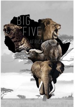 The Big Five dieren diamond painting